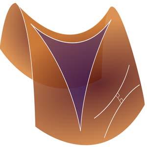 هندسه ديفرانسيل كد 1110011127 گروه 1 ترم 991